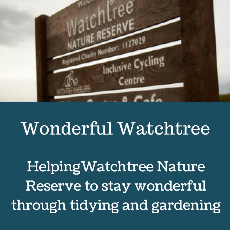 Wonderful Watchtree.png