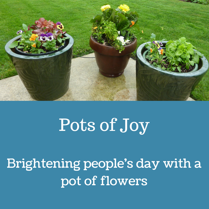 Pots of joy.png