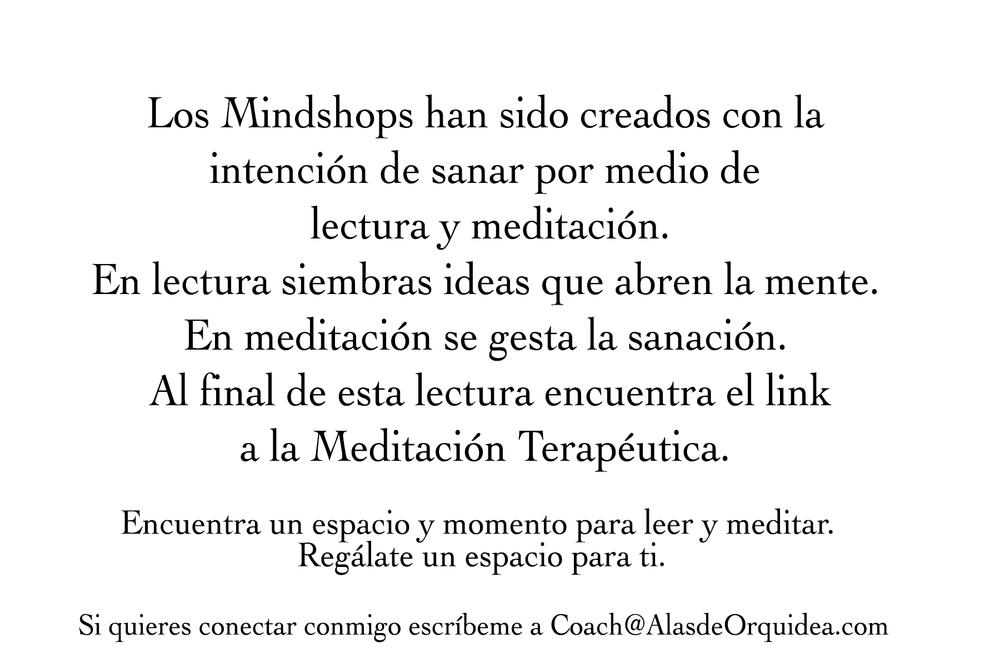 PRE-Mindshops.png