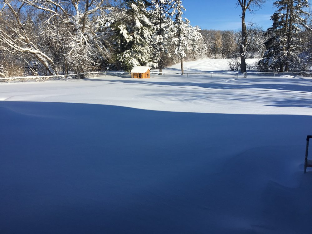 The new snow and the sun make for a beautiful morning.