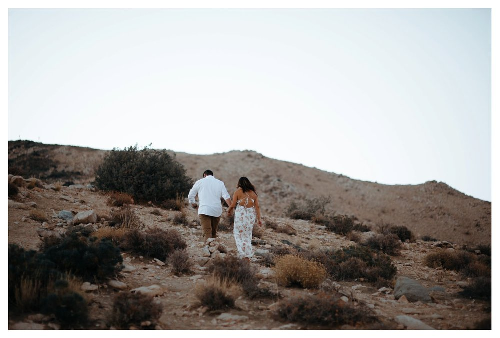 Joshua_Tree_Engagement_The_Singlers_0044.jpg
