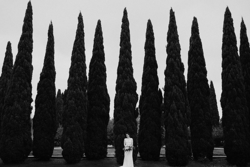 A bride stands in front of tall slender evergreen trees
