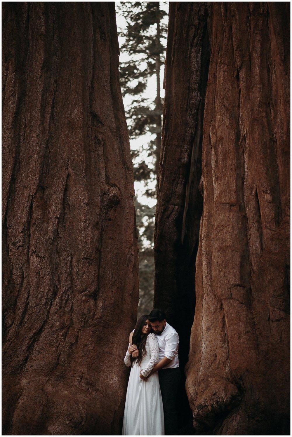 Sequoia_National_Park_Engagement__0026.jpg