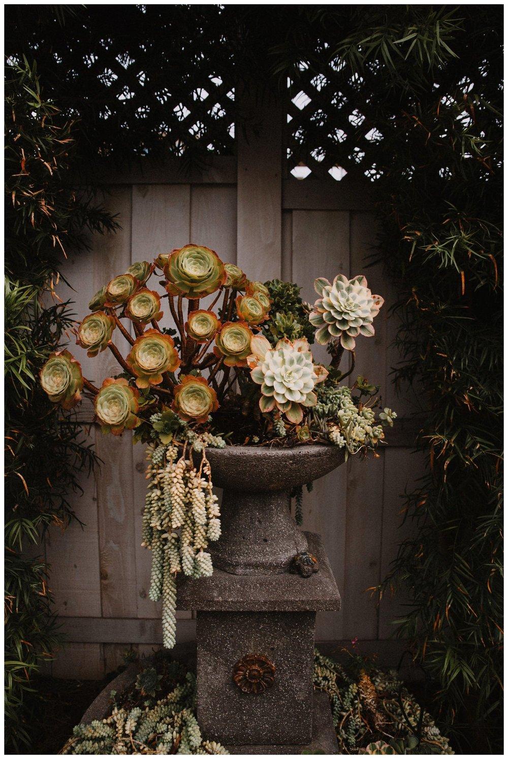 Darlington_House_Wedding_0031.jpg
