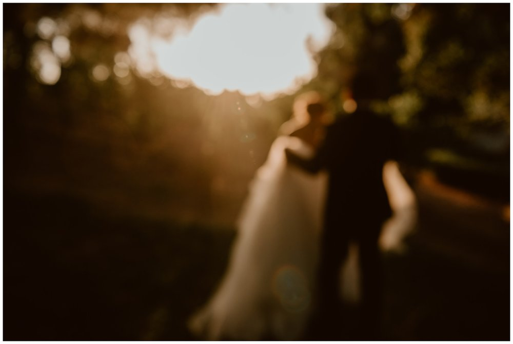 Lake_Oak_Meadows_Wedding_0043.jpg