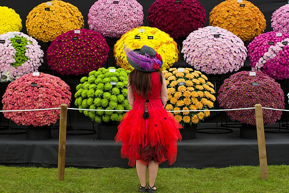 bright-hat-outfit-and-chrysanths940x627.jpg