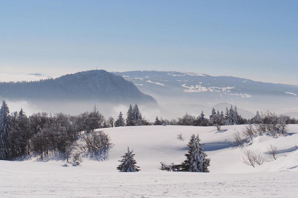 Il massiccio del Giura, © Frederic49 / Shutterstock.com