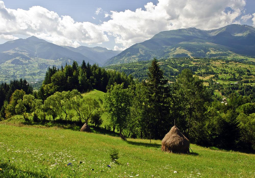 campagna in Romania
