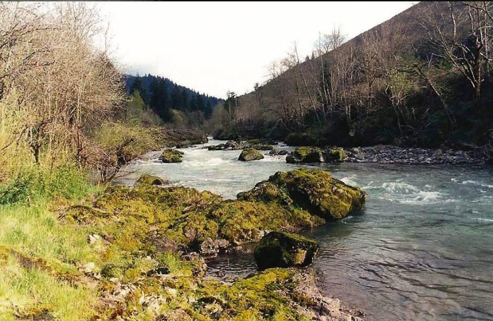 Row River, Oregon. Image courtesy of John Bengston.