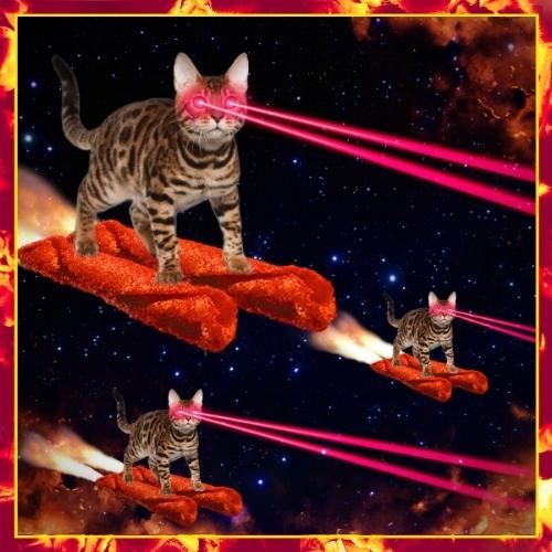Fuego_laser cats.jpg