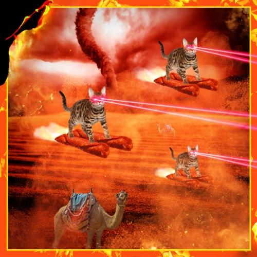 Fuego_lasercats_sandstorm3.jpg