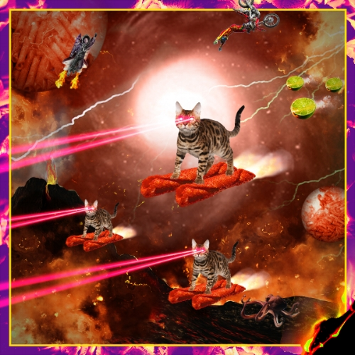 Fuego_lasercats_takiverse3.jpg