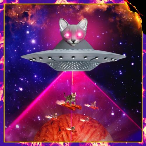 Takis_lasercats_end2.jpg