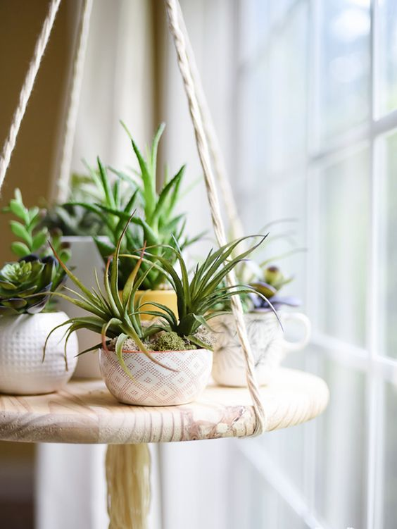Succulents: a low maintenance option that will stick around for more than just a few days
