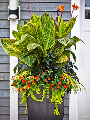 Tropical Planter with lots of greenery