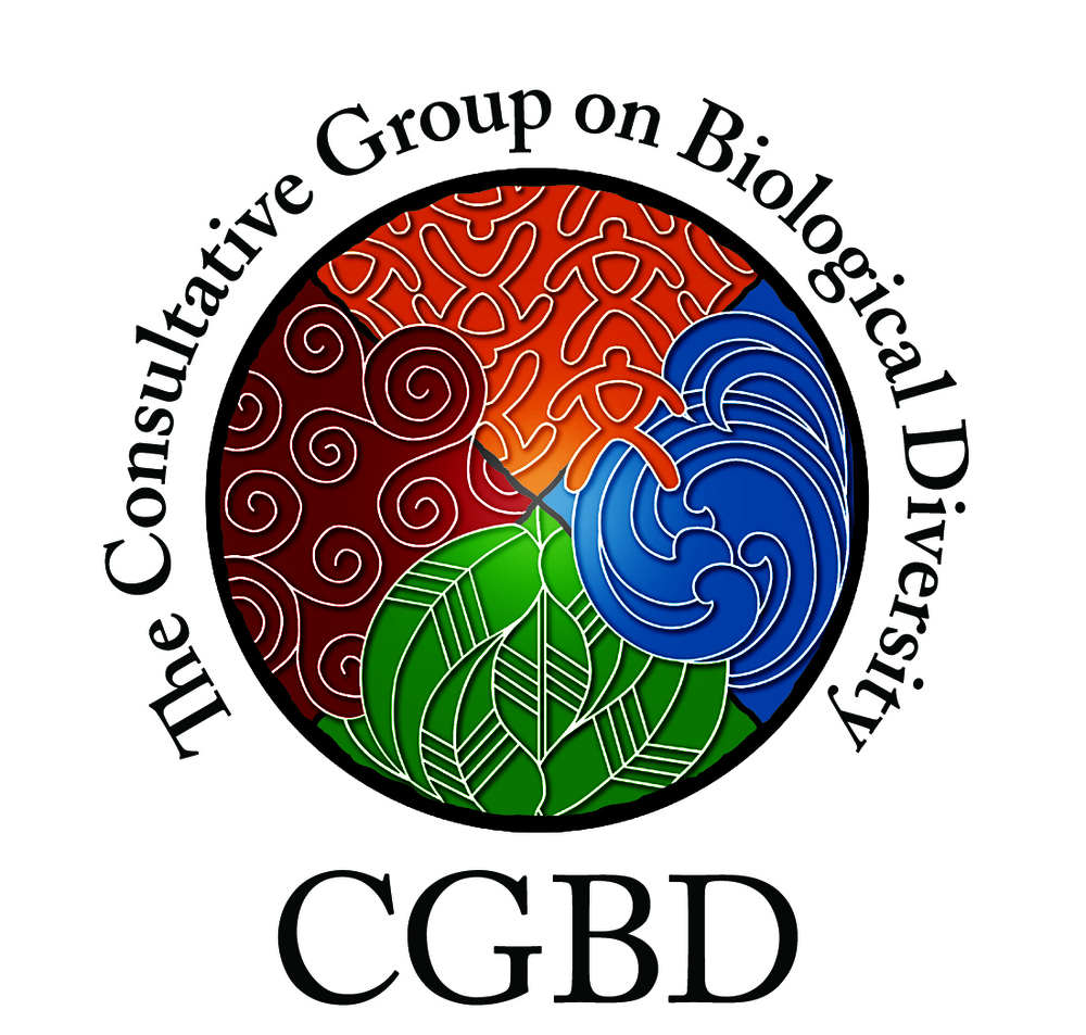 Copy of CGBD