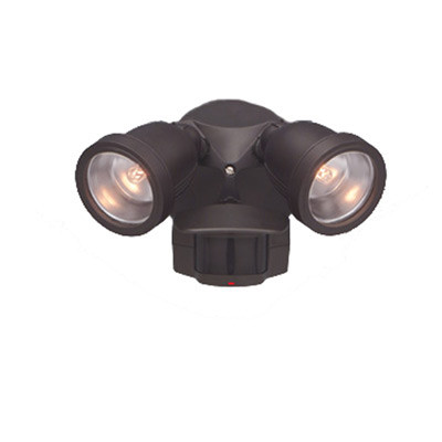 Motion detector lights