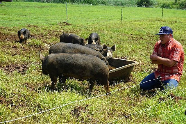 @Regrann from @hifoodwinefest -  Brandon Lee of @KaunamanoFarms started with only six pigs and his farms continues to grow and flourish. #HFWF16CulinaryJourney #NaturalLEEGrown #Regrann