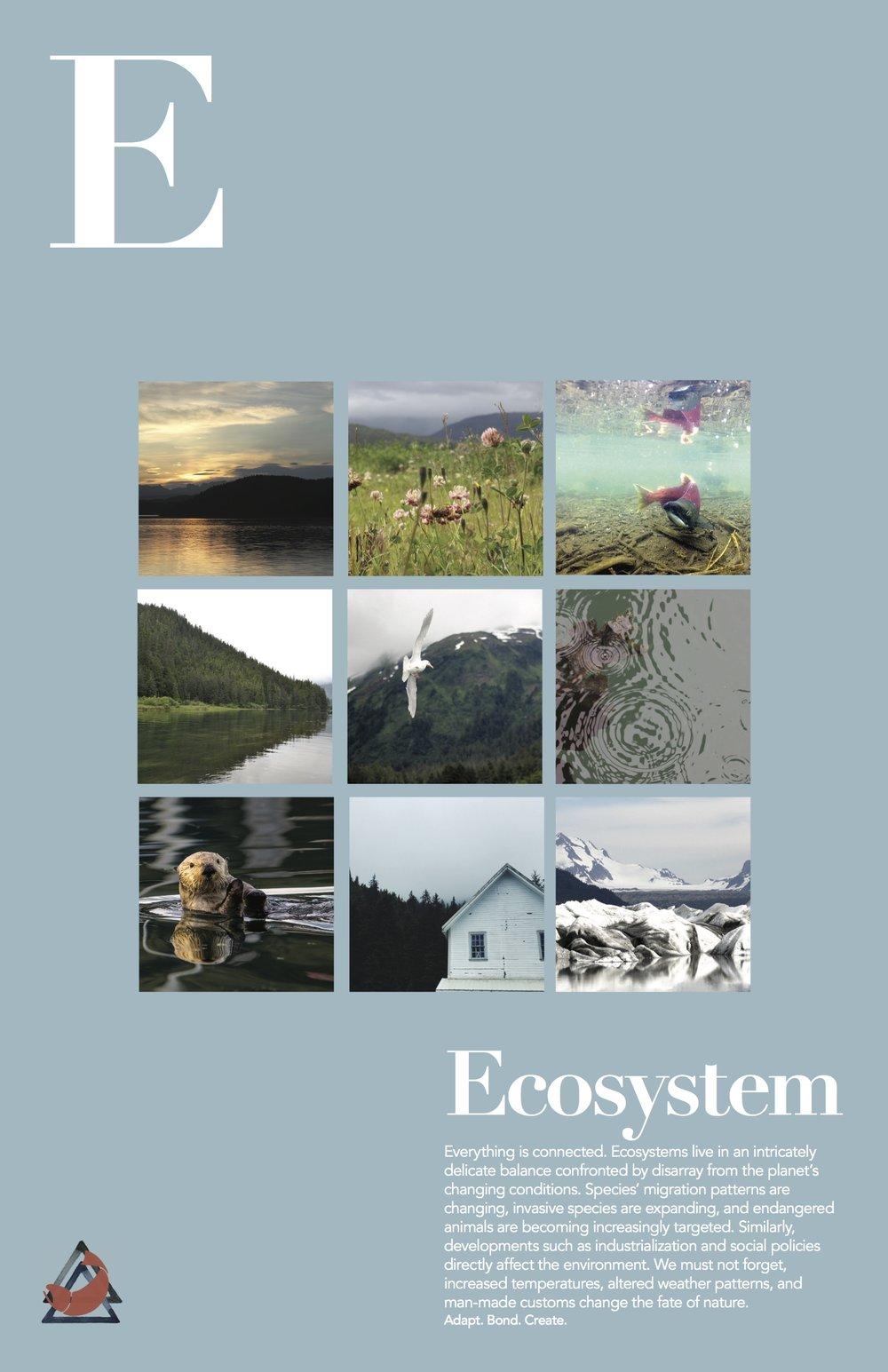 ecosystem_final.jpg