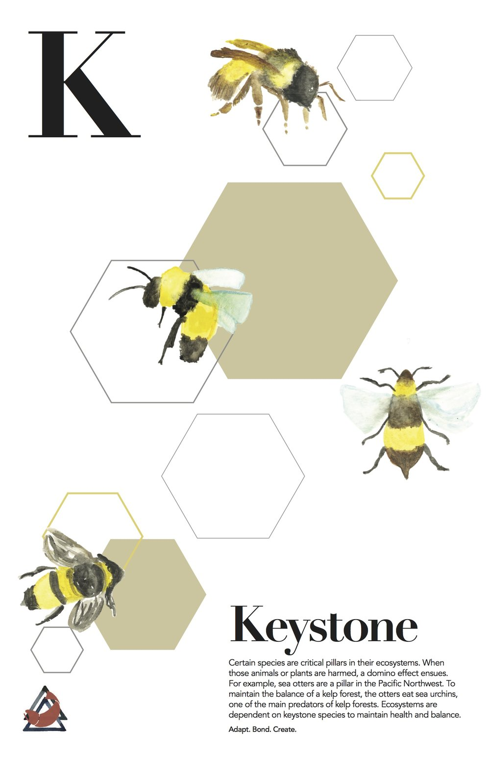 keystone_final.jpg