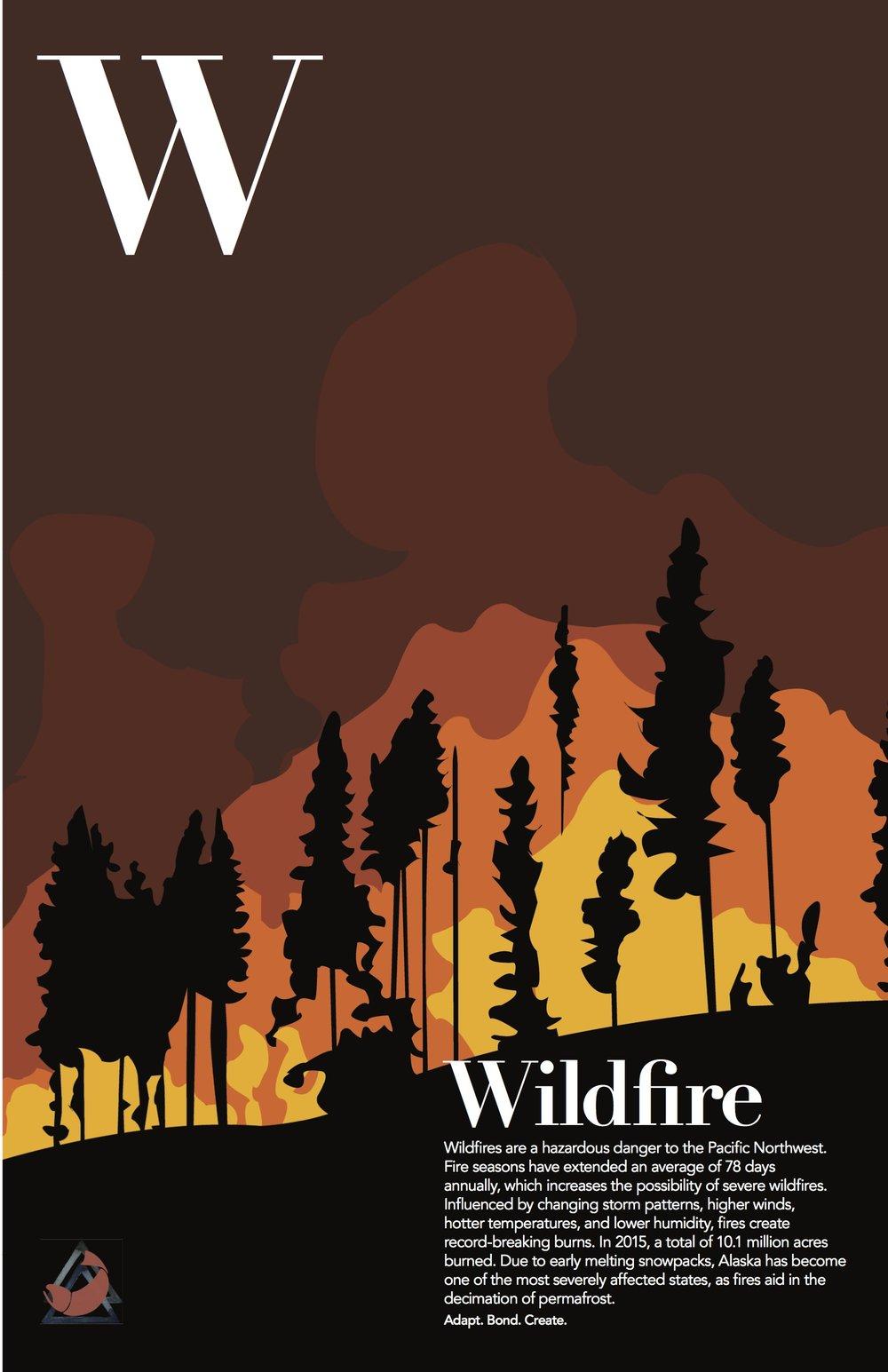 wildfire_final.jpg
