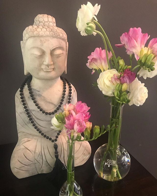 The best use of chemistry beakers (says the daughter of a chemist)... #springflowers #chemistry #flowervases #buddha