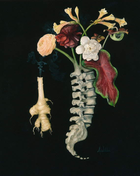 Spinal Vanitas inspired Watercolor Painting of Spine with Flowers - Giclee Print $22+