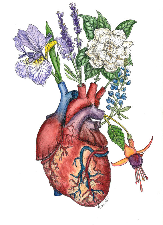 Vascular Vase Anatomical Watercolor Painting of Heart and Flowers - Giclee Print $22+