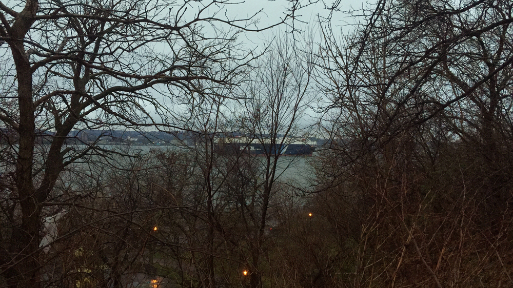 A ship on the Narrows, as seen through the blooming trees in Shore Road Park on a rainy early April dusk - April 4, 2016