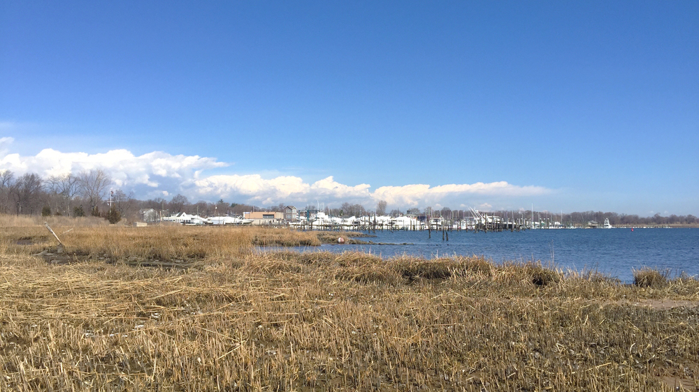 Looking north at a picturesque Mansion Avenue along the Great Kills Harbor - March 17, 2016