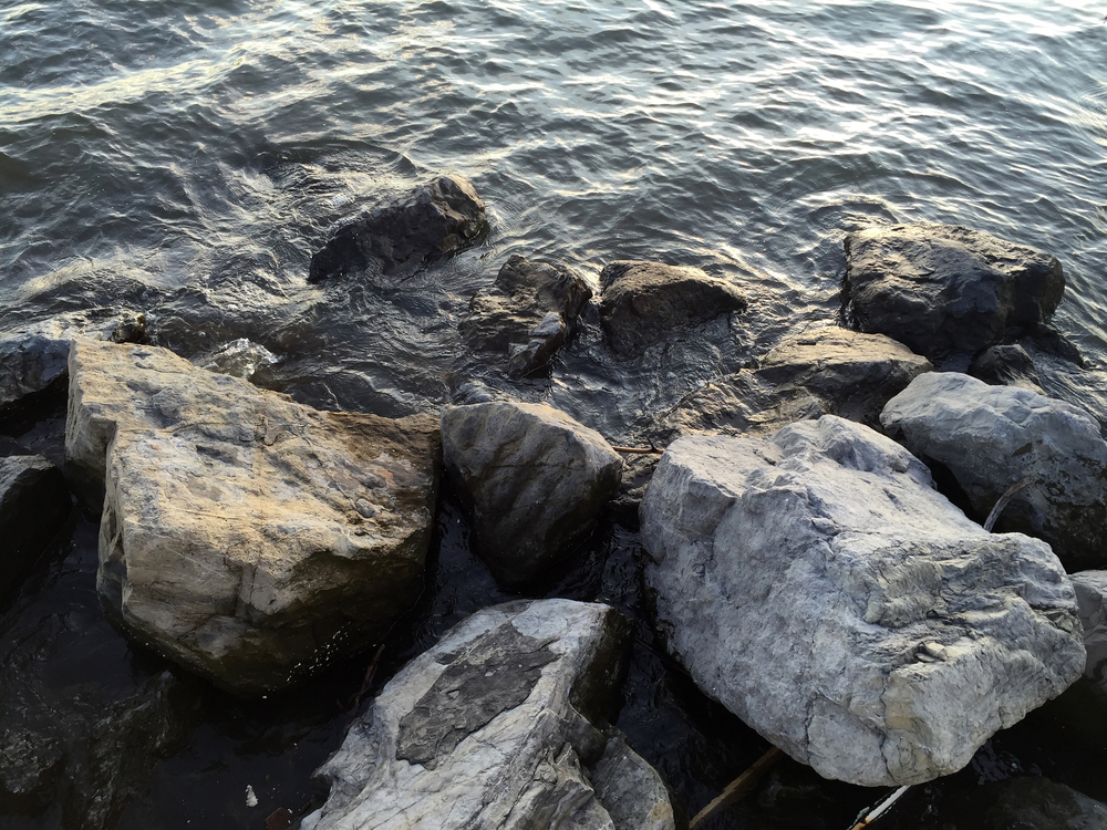 Rocks along the shore - August 28, 2015