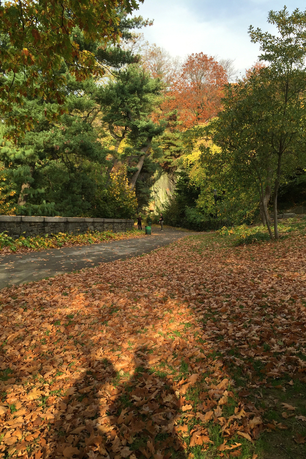 Autumn in Fort Tryon Park - November 6, 2015