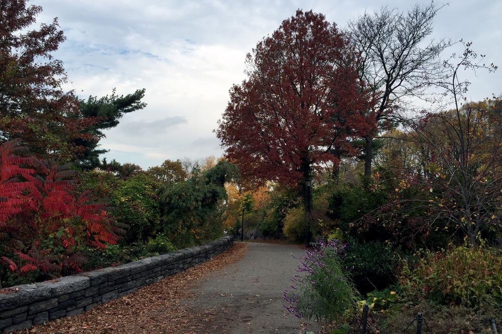 Autumn in early November inside Fort Tryon Park - November 6, 2015