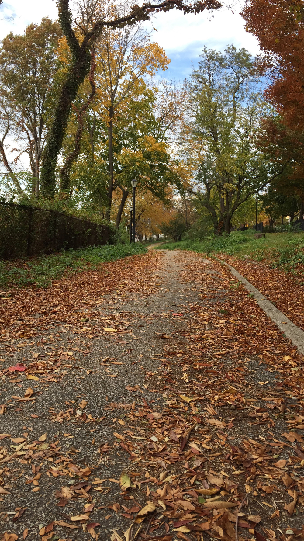 A Shore Road Walking Path - November 1, 2015