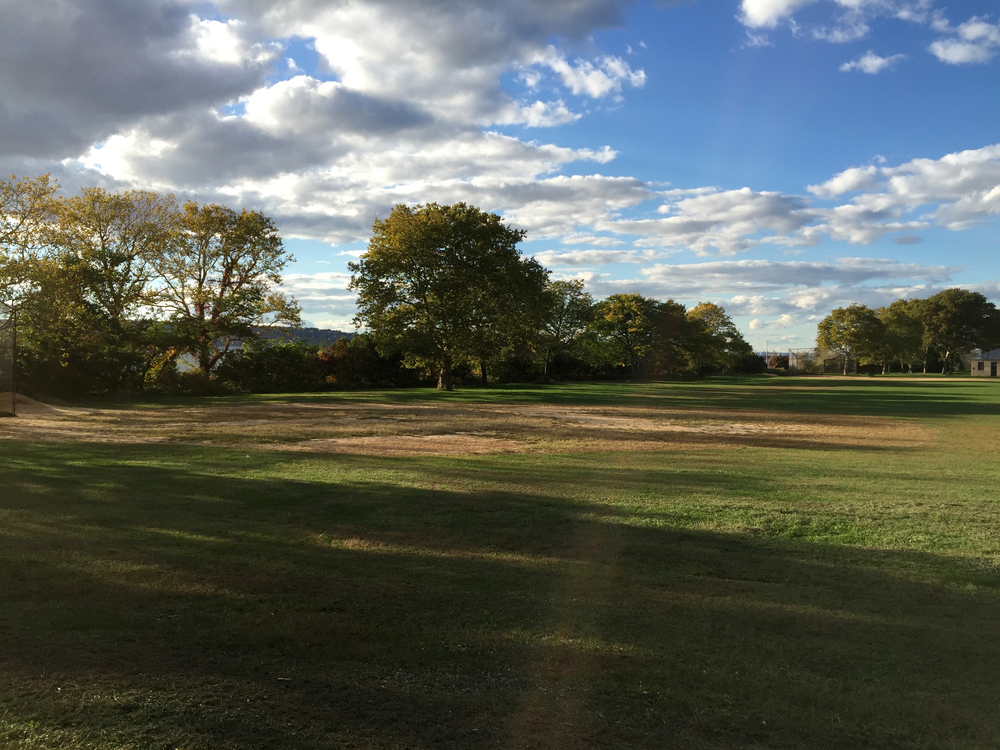 Bucolic fields in Brooklyn along the water - October 16, 2015