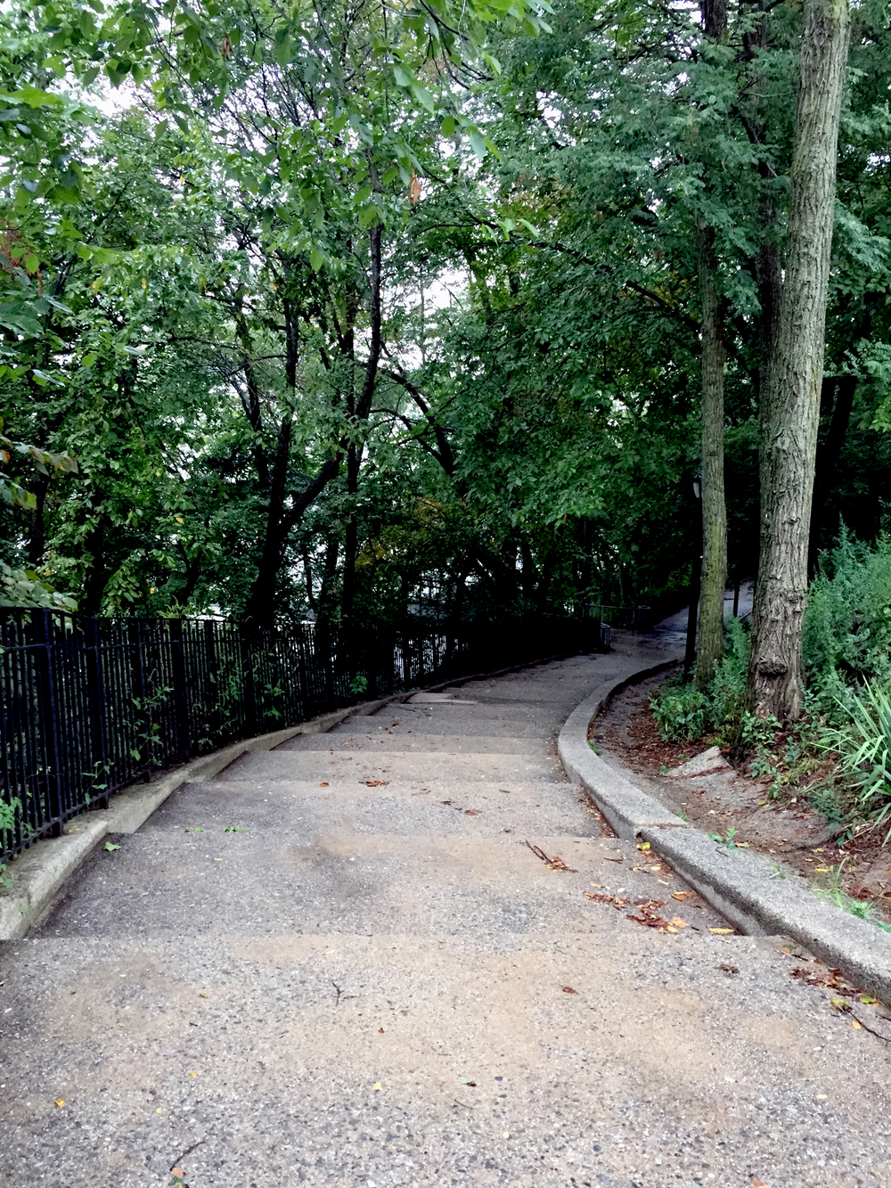 Looking down a Walking Path along Shore Road Park - September 10, 2015