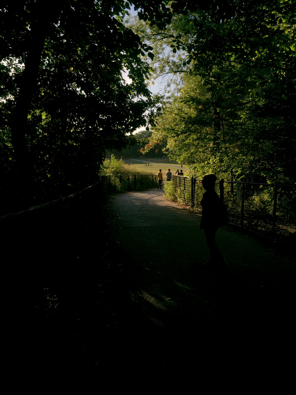 A walking trail in Prospect Park, Brooklyn draped in shadow while the upcoming meadow is drenched in sunshine, in late afternoon on a September day - September 5, 2015