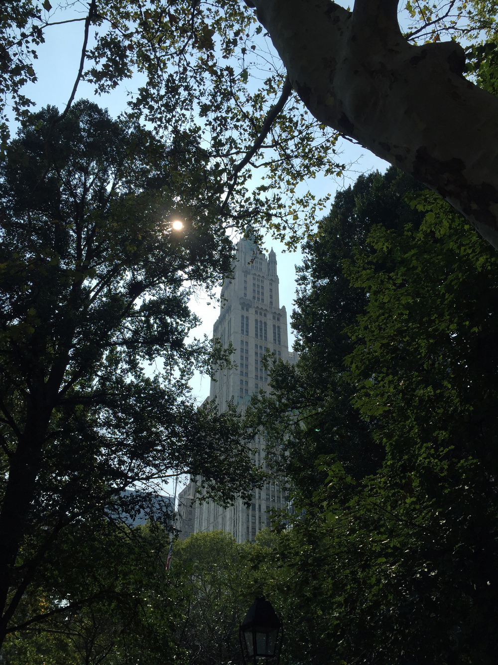 The Manhattan Municipal Building through trees in City Hall Park - September 3, 2015