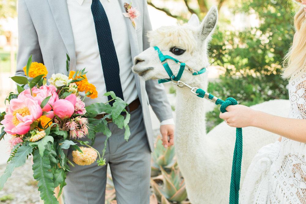 Floral Fiesta Wedding CSUCI-69.jpg