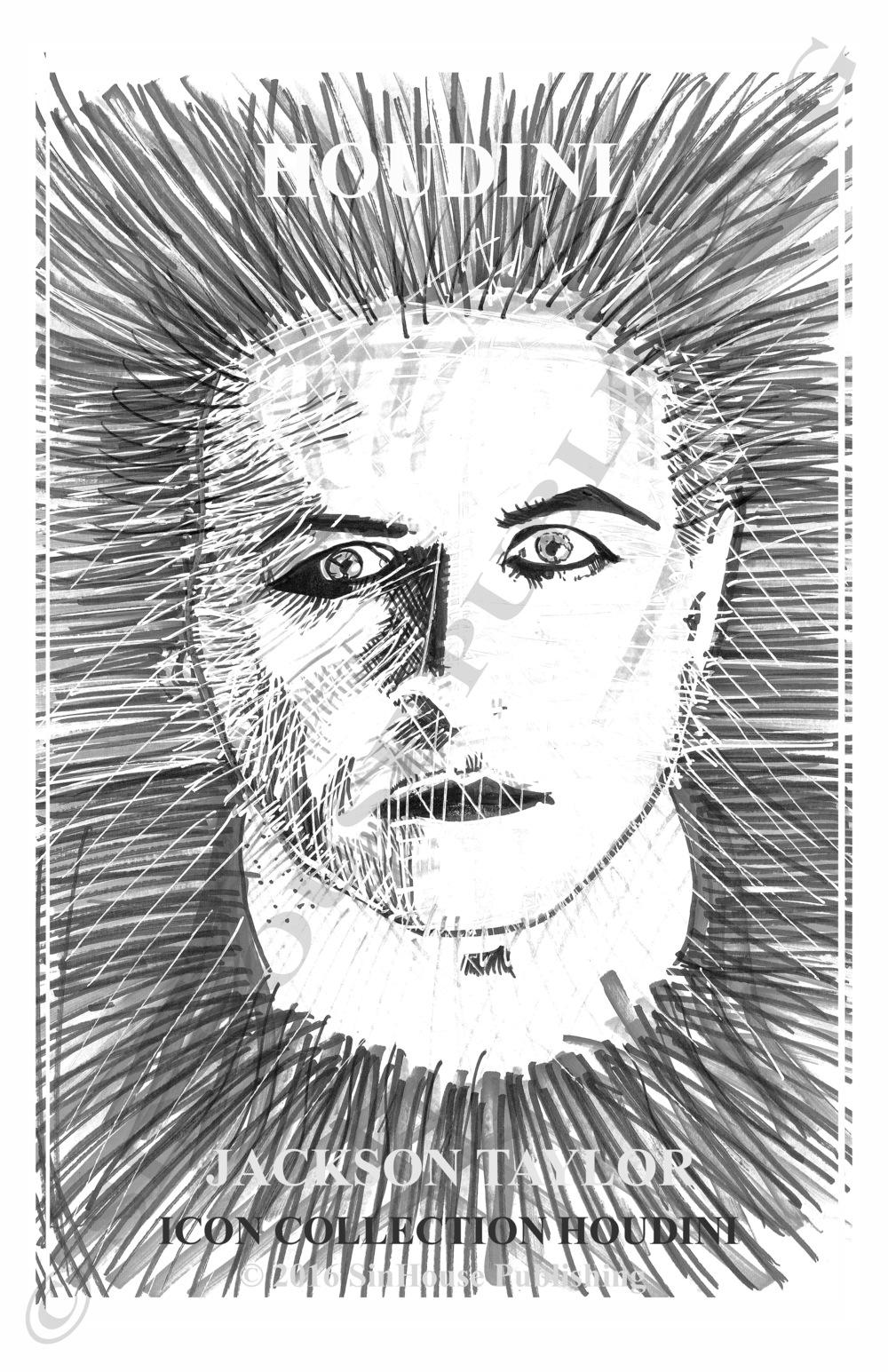 HoudiniWM.jpg