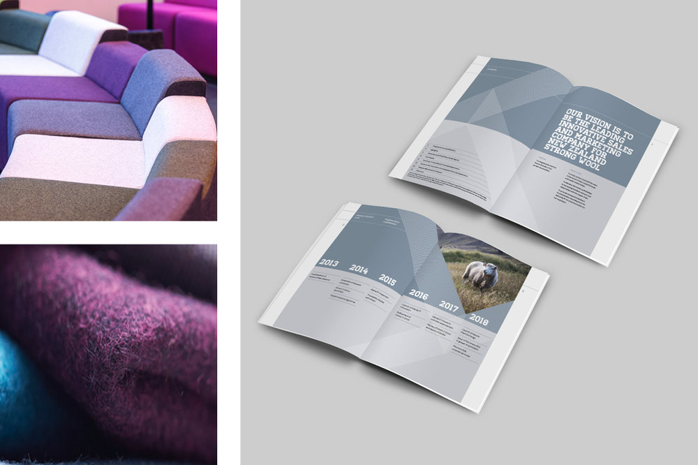 WNZ Annual Report Mock Up2.jpg