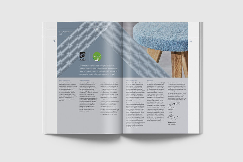 WNZ Annual Report Mock Up3.jpg