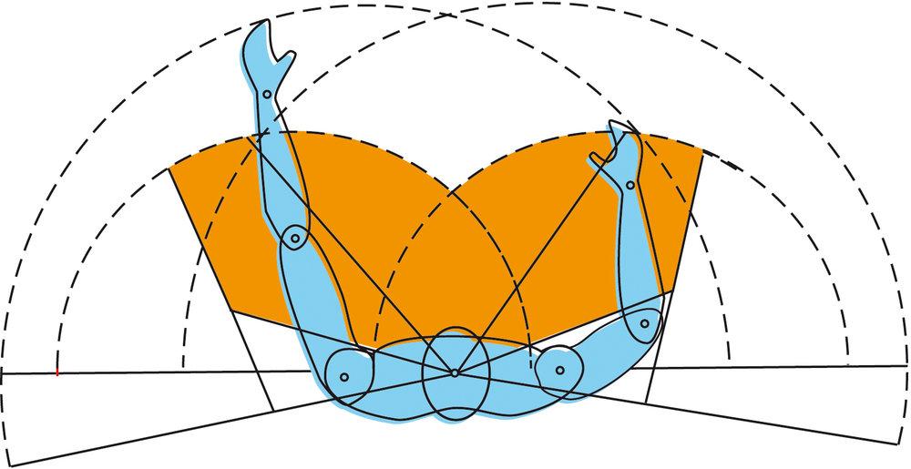 Ergonomía._Áreas_operativas_de_la_simetría_bilateral_del_cuerpo_humano_en_planta_-Iñaki_Otsoa_(sobre_gráfico_del_libro_de_ergonomía_de_ESADM)._CC._By._ShA_$no-.jpg