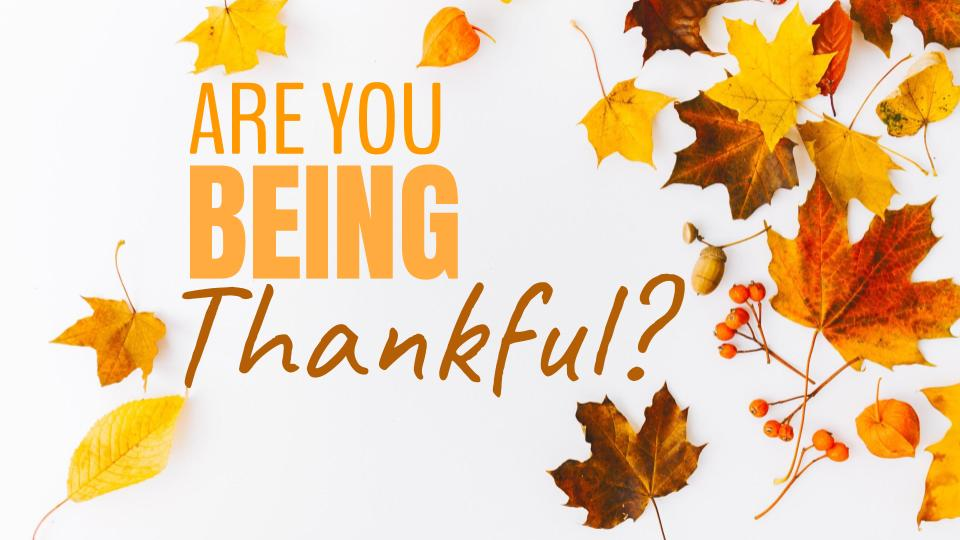 are you being thankful 11.04.18.jpeg