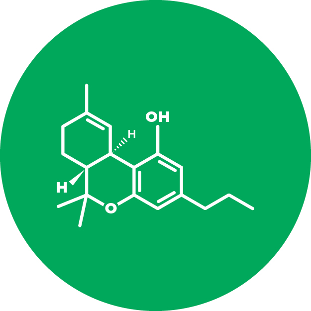 Tetrahydrocannabivarin (THCV)   Tetrahydrocannabivarin's chemical structure is similar to THC, but it reacts differently with our cannabinoid receptors. THCV is psychoactive and researchers are investigating its appetite suppressant and anticonvulsant properties.