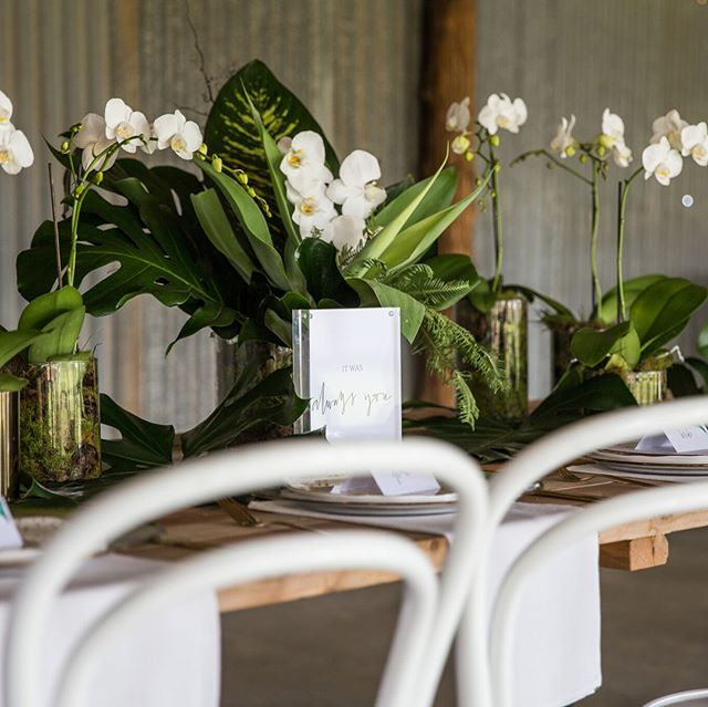 We're excited to announce that this gorgeous luxe country shoot we planned and styled was shared on @polkadotbride 😍  We had an amazing team of vendors - tap for credits! . . . #yellowlaneevents #wedding #weddingdress #floralstyling #orchids #tropical #romance #love #weddingphotography #weddingstyling #weddingplanning #riverinaweddings #styledshoot #creative #bride