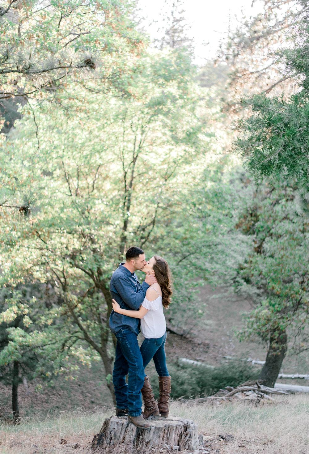Lake Arrowhead Engagement