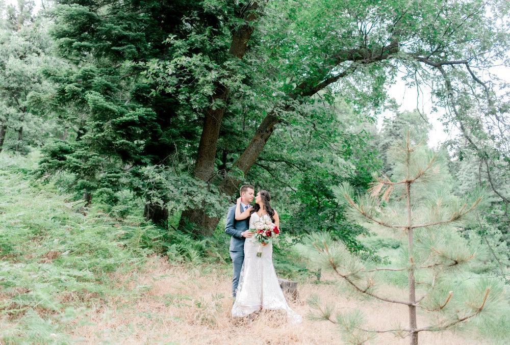 Skypark Wedding