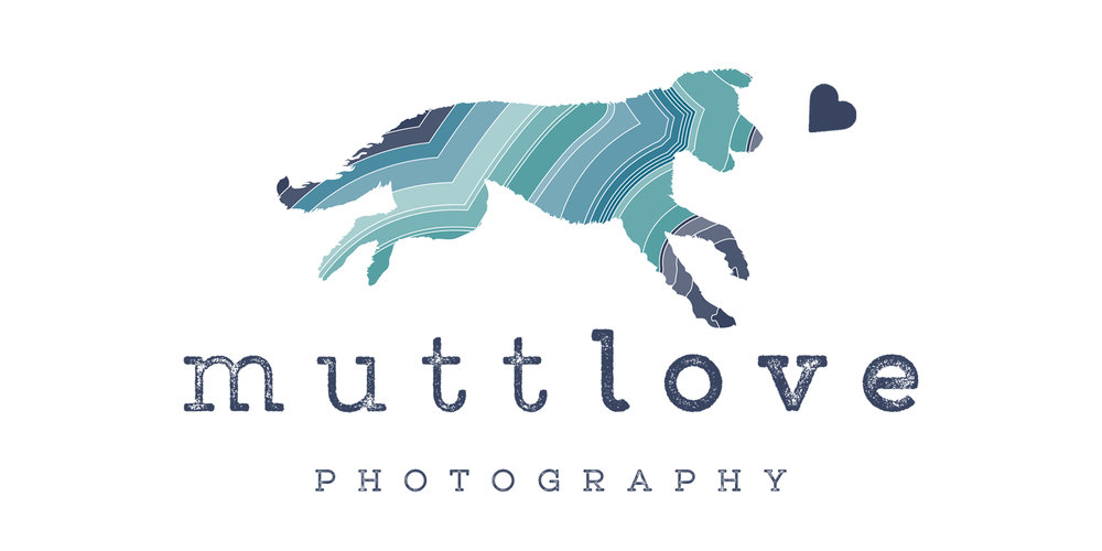 MuttLovePhotography logo.jpg