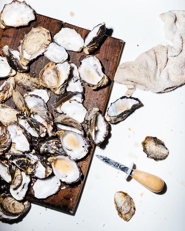Smoking oysters. #tasmania #oysters #brunyisland